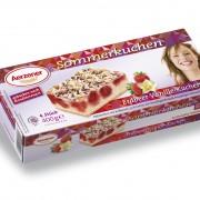 Erdbeer-Vanille-Kuchen Download